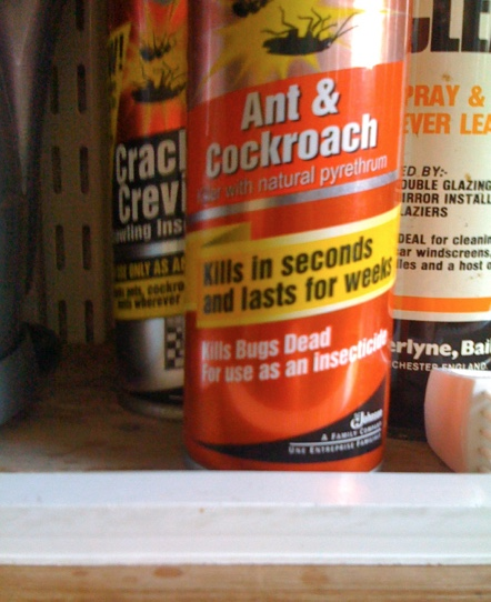 A can of Ant and Cockroach spray with a logo that claims that it kills in seconds and lasts for weeks