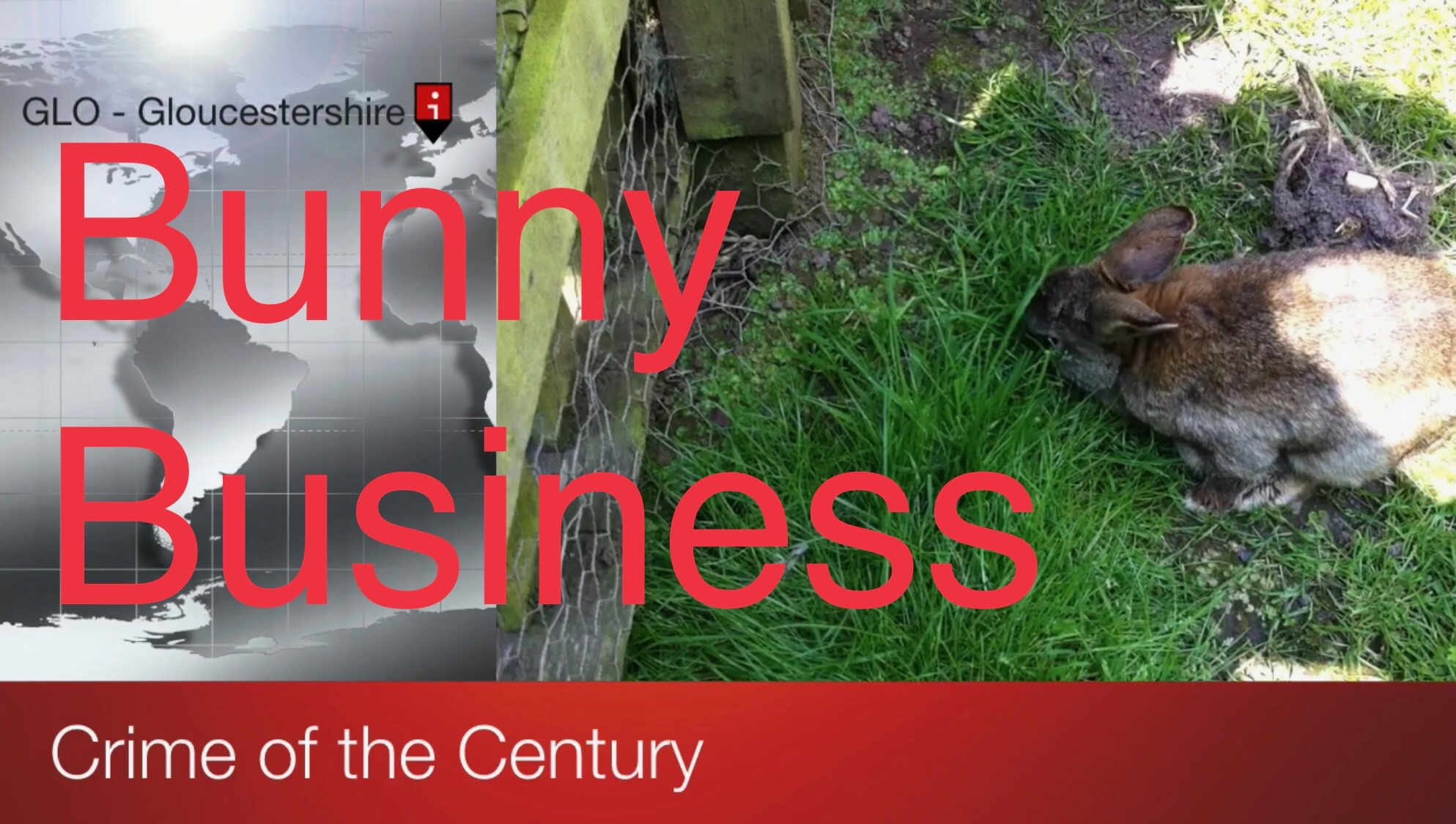 The title card from my short video showing a large scale map and picture of a rabbit with the title Crime of the Century