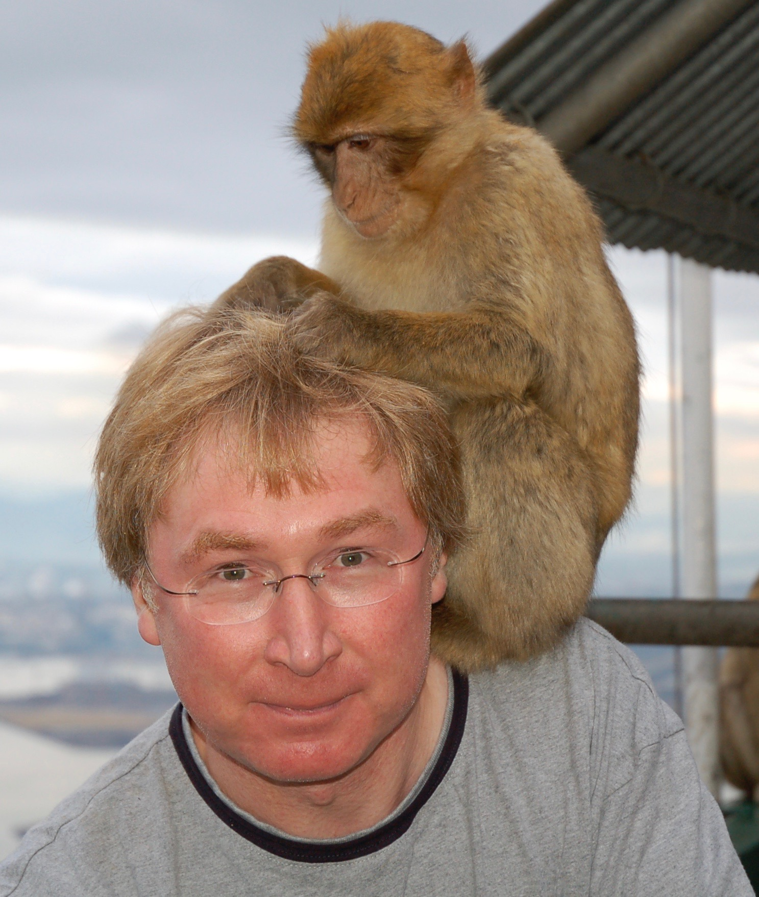 A monkey sat on the shoulder of Vince