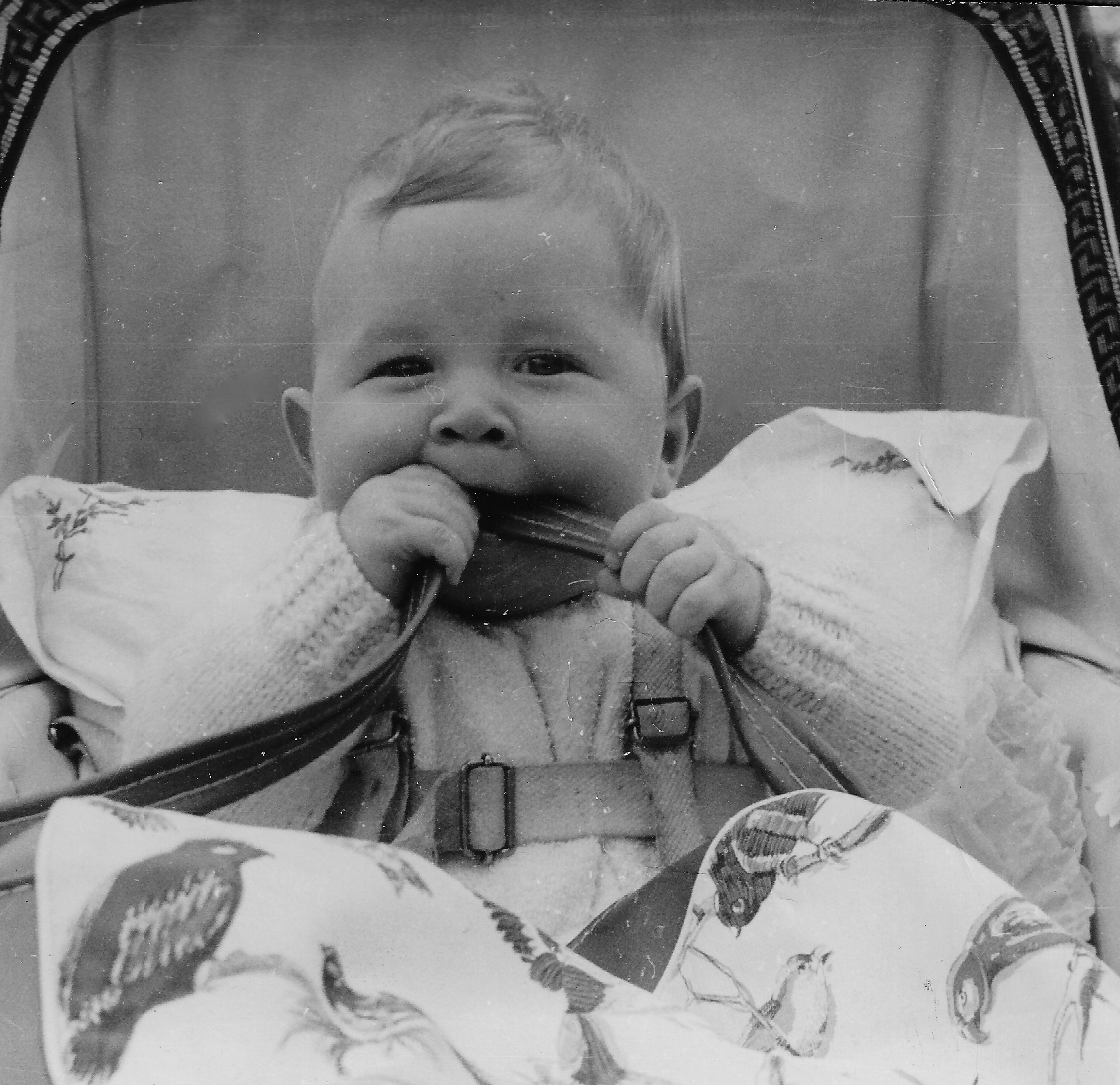 Black and white photograph of Vince Poynter in a pram chewing on a strap