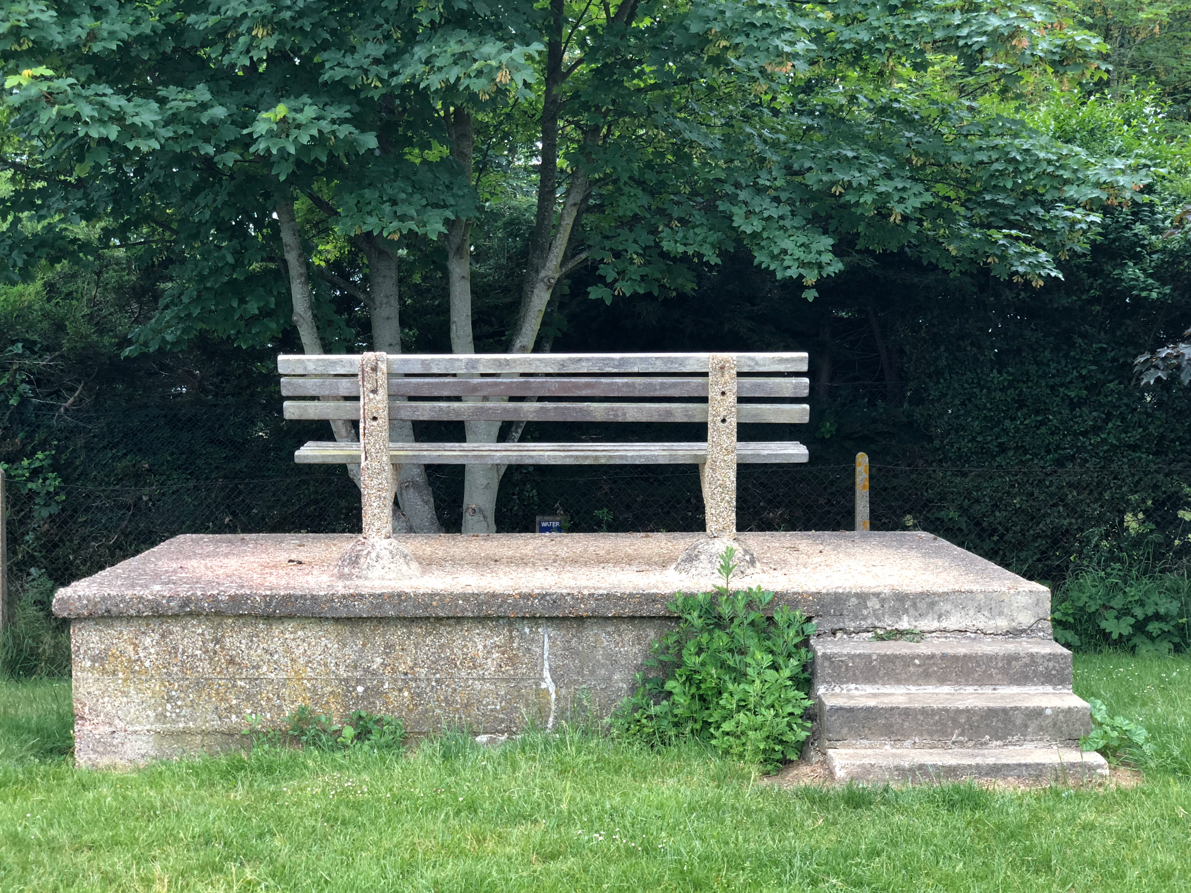 A concrete seat with wooden seat and back planks elevated on a concrete plinth, with steps, faces a medium sized tree just in front of the seating position, with an overgrown hedgerow just beyond behind a chain link fence. The seated position would give no more than a few feet of view